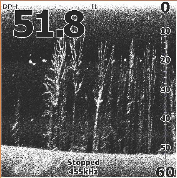Эхолот Lowrance Mark-5x DSI , отзывы