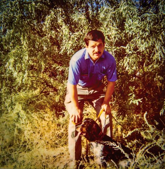 Из опыта охоты на фазанов с собаками