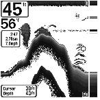 вид экрана сонара humminbird