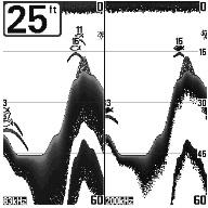 humminbird Вид экрана раздельных лучей (200/83 kHz)