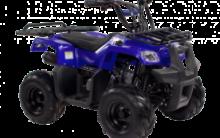 Квадроцикл — покоритель бездорожья. Общая информация