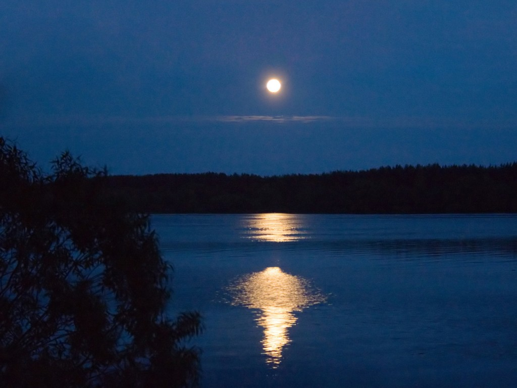 А.Козюков, лунная ночь