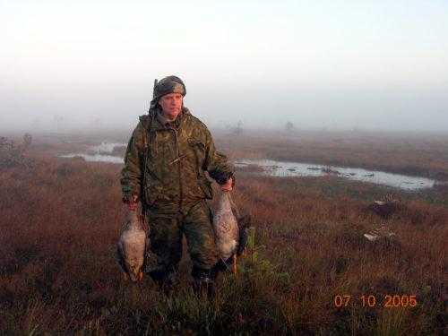 азаров гуси,туман