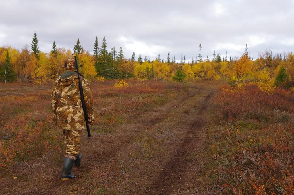 осенняя охота, охотник, охота, лось,